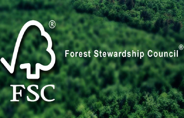 Chứng chỉ FSC được cấp sẽ có giá trị trong thời gian 5 năm.