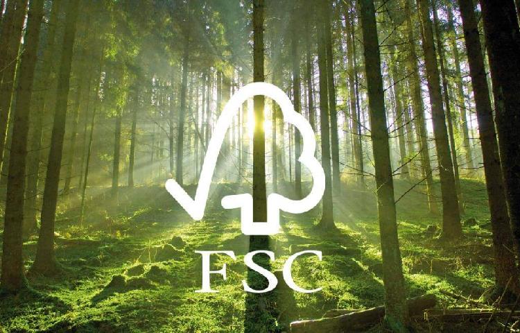 FSC là chứng nhận quan trọng liên quan đến các sản phẩm chế biến từ gỗ
